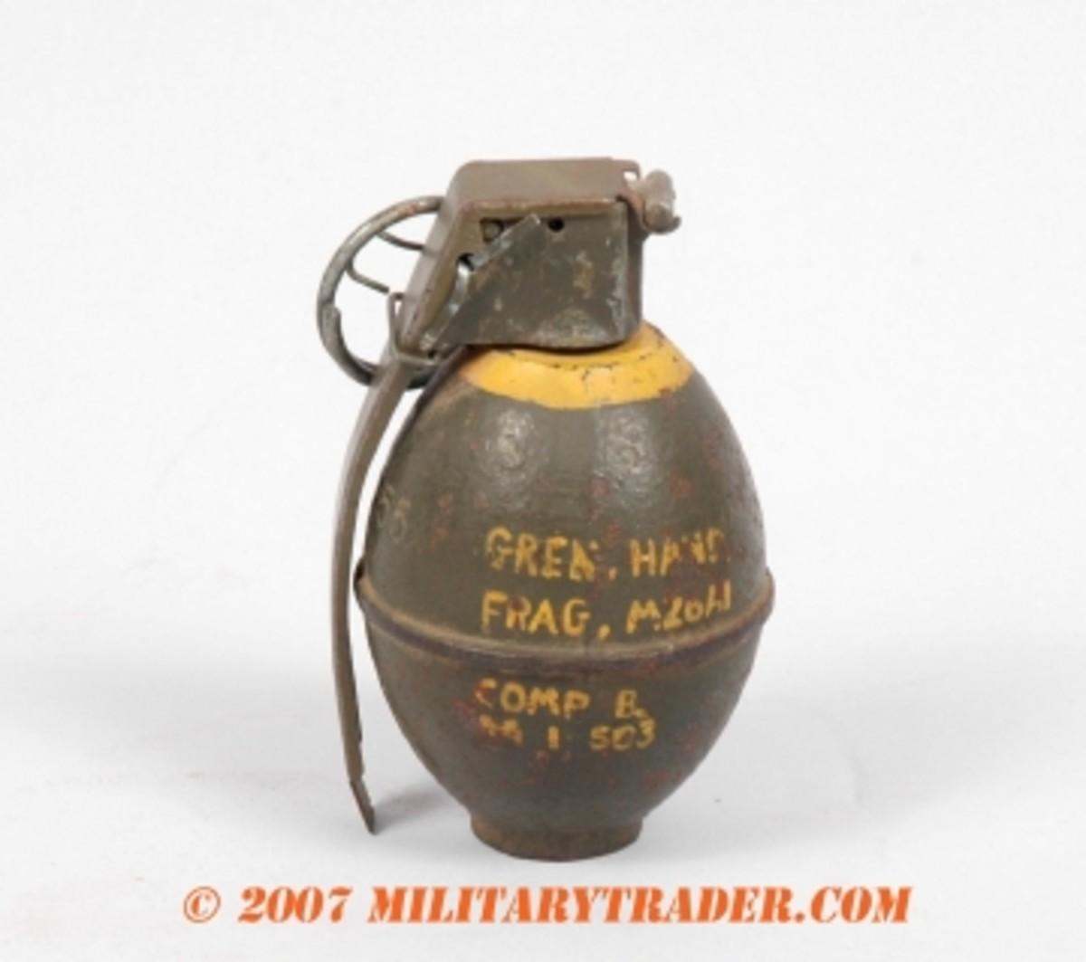 grenadeFig 2 copy.jpg