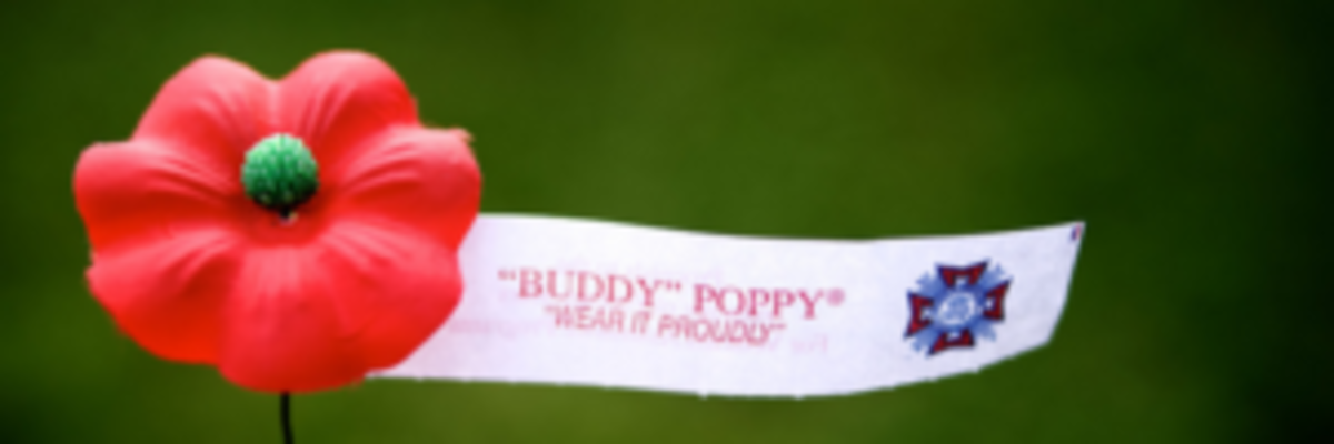 Before Memorial Day in 1922, The VFW conducted our first poppy distribution, becoming the first veterans' organization to organize a nationwide distribution. The poppy soon was adopted as the official memorial flower of the Veterans of Foreign Wars of the United States, as it remains today.