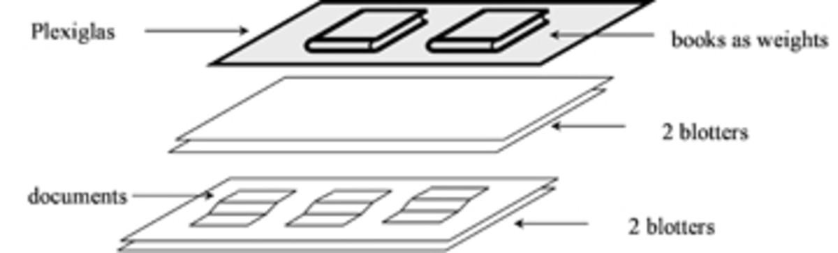 Figure 4copy.jpg