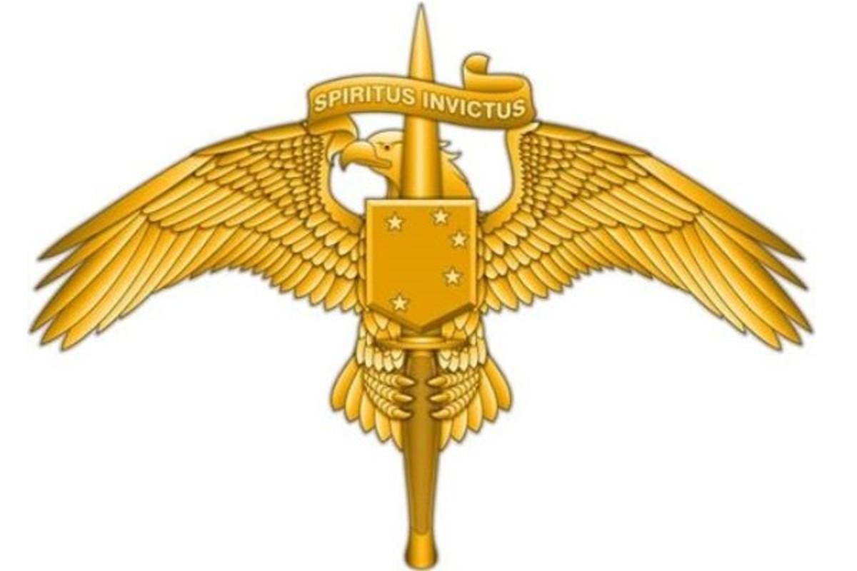 marsoc-insignia-pin-600x400