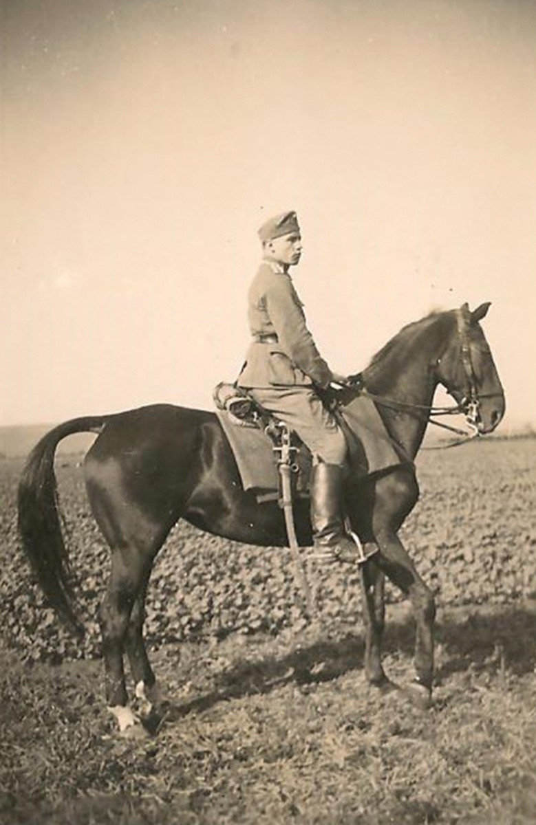 An army NCO on his beautiful black mare with dress saberattached to the saddle at the ready.