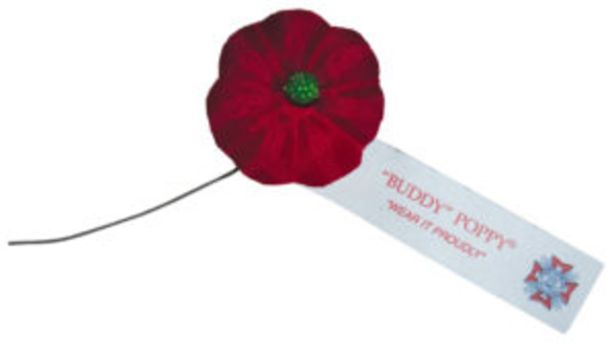 "The Veterans of Foreign Wars of the United States was the first veteran organization to promote a nationally organized campaign for the annual distribution of poppies assembled by American disabled and needy veterans. In 1924, the VFW patented the name ""Buddy Poppy"" for their version of the artificial flower."