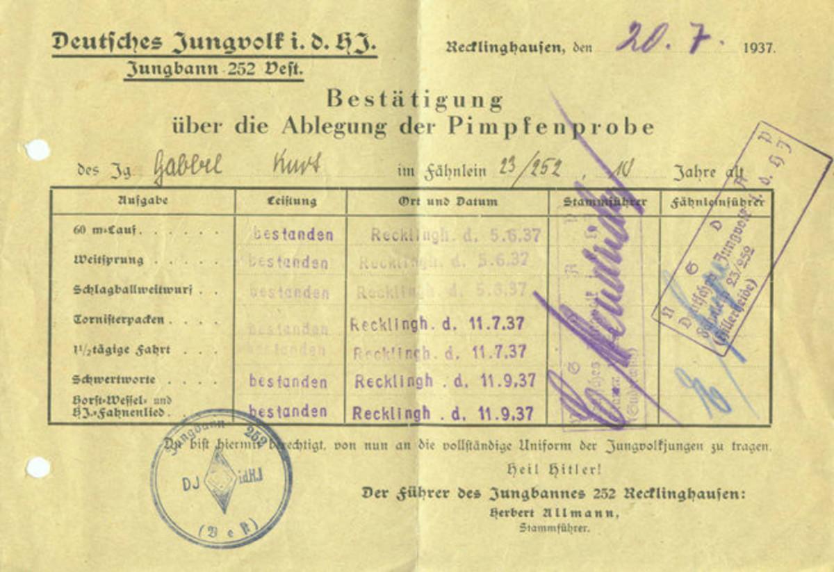 Figure-3 Pimpfenprobe Score Sheet