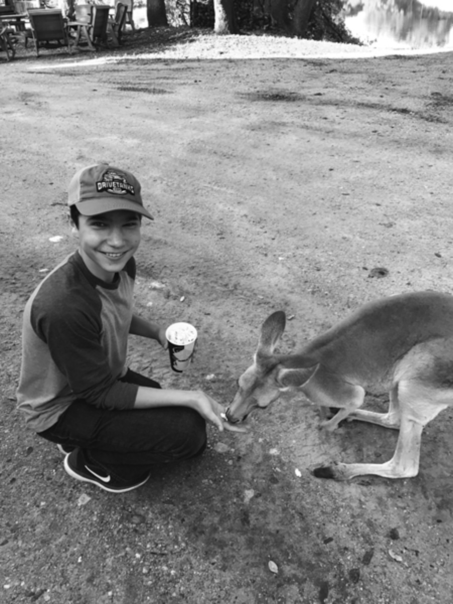 After all the fun, you can feed the kangaroos some popcorn at the lodge. Ox Ranch is truly free range!