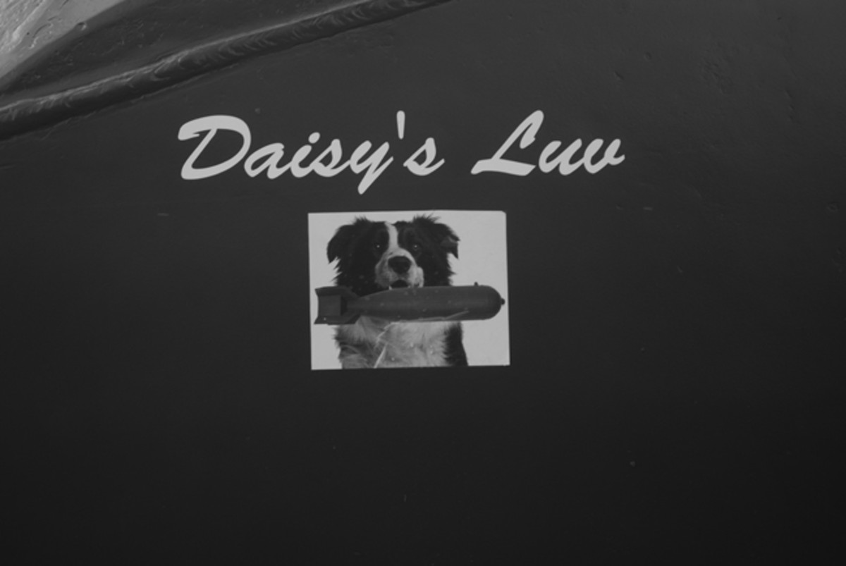 The original No. 105 carried the picture of a bomb-sniffing dog, Daisy. This was replicated on the restored vehicle – and led to an uncanny reunion.