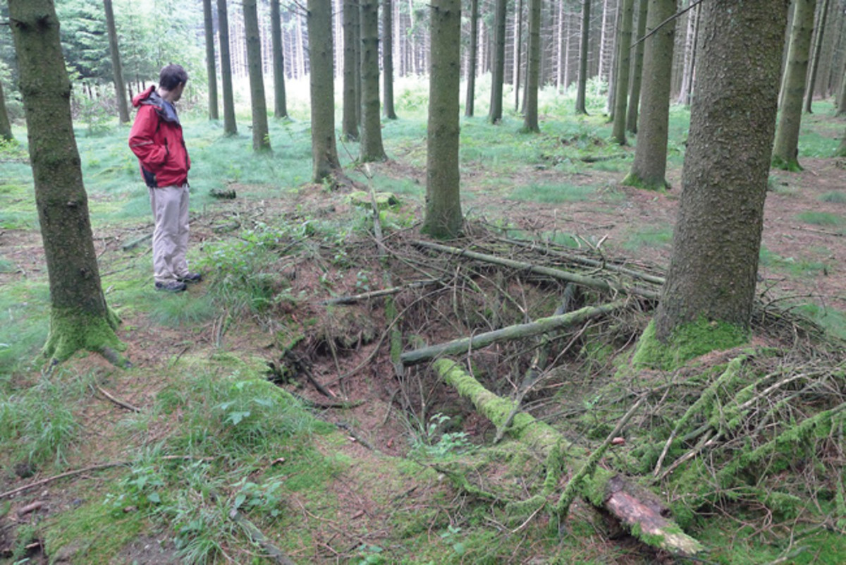 An American foxhole dug during the Battle of the Bulge in 1944 near Foy is one of many still discernible in the Belgian Ardennes forest. Photo by David Passmore