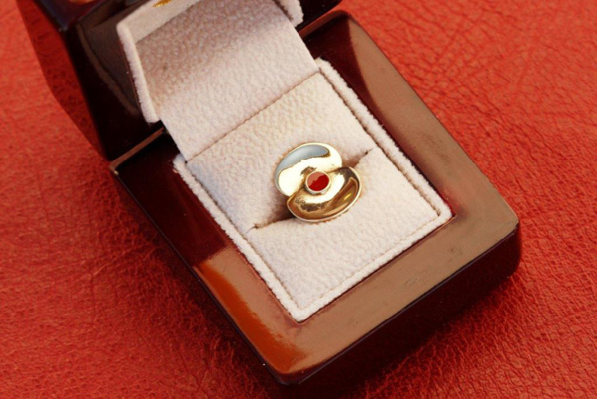 The final poppy pin as it pays tribute to the fallen at Somone