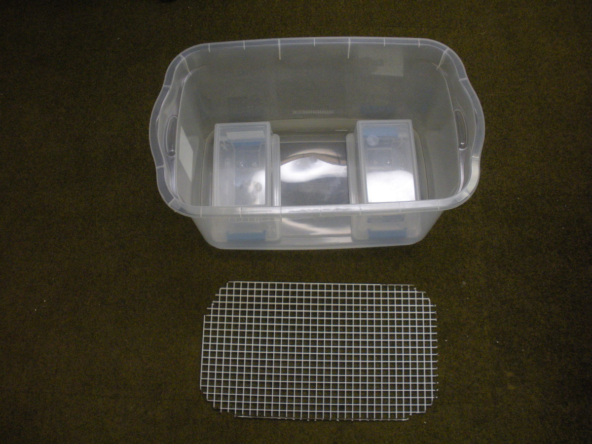 Plastic tub with cut-out egg crate and two plastic support boxes.