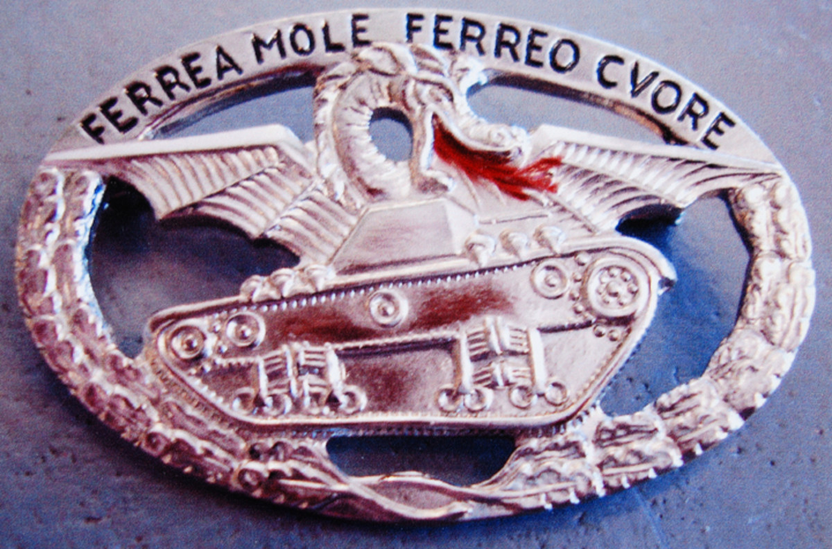 Oval tank driver and crew badge in silver for troops.