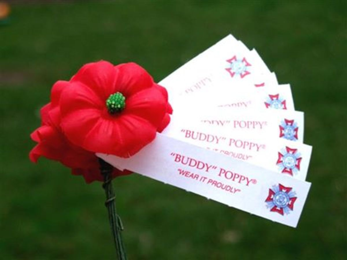 Bouquet of Buddy Poppies