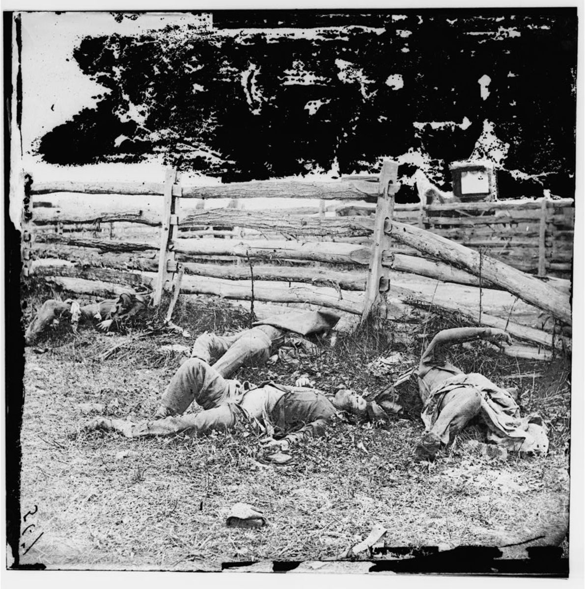 Dead Louisiana soldiers at Antietam. One of two glass plates that formed a stereoview by Alexander Gardner, September 1862.
